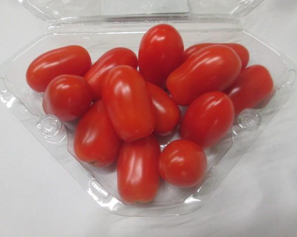 Cherry Plum 12*250g Doona